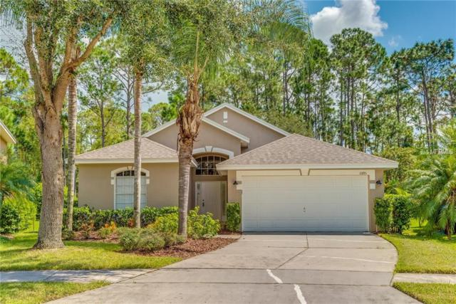 10195 Leland Drive, Orlando, FL 32827 (MLS #O5733954) :: The Light Team