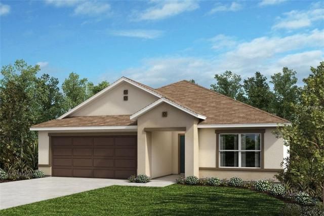 255 Lake Lucerne Way, Winter Haven, FL 33881 (MLS #O5734130) :: Gate Arty & the Group - Keller Williams Realty