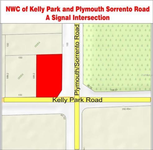 3001 W Kelly Park Road, Apopka, FL 32712 (MLS #O5734136) :: RE/MAX Realtec Group