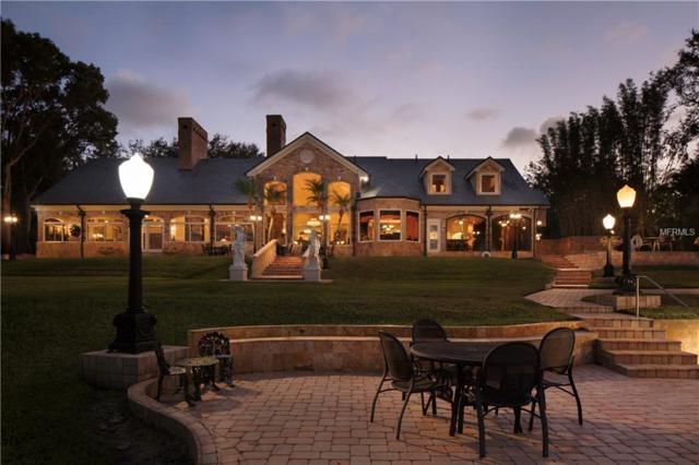 115 Palmer Avenue, Winter Park, FL 32789 (MLS #O5734401) :: G World Properties