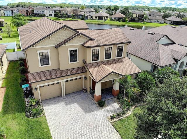 9707 Moss Rose Way, Orlando, FL 32832 (MLS #O5734518) :: The Light Team