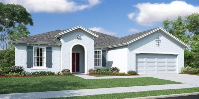 5708 Hevena Court, Palmetto, FL 34221 (MLS #O5734614) :: Medway Realty
