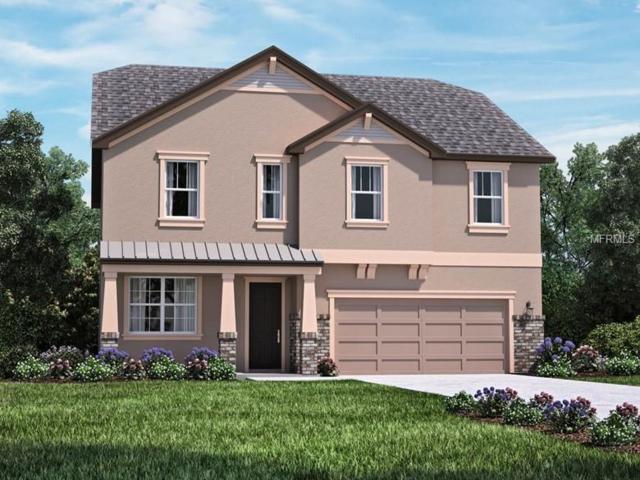 733 W Bayshore Drive, Tarpon Springs, FL 34689 (MLS #O5734676) :: Beach Island Group