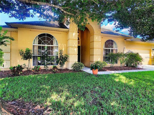 20439 Nettleton Street, Orlando, FL 32833 (MLS #O5734884) :: Mark and Joni Coulter | Better Homes and Gardens