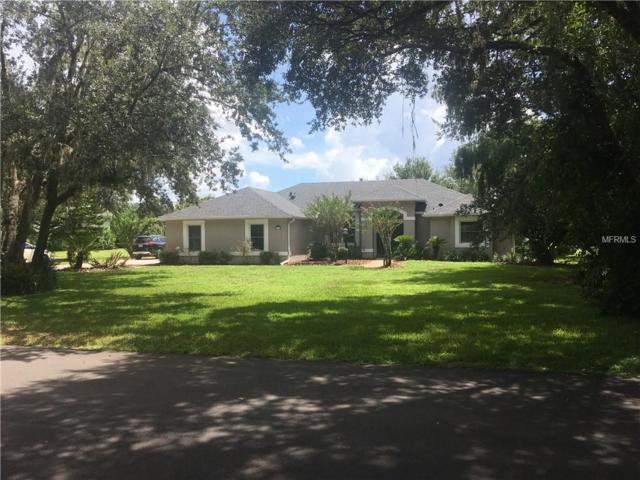 3195 Misty Morn Court, Saint Cloud, FL 34771 (MLS #O5735143) :: Cartwright Realty