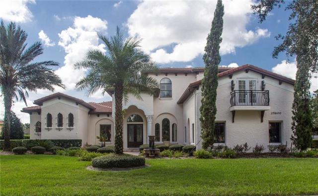 25600 High Hampton Circle, Sorrento, FL 32776 (MLS #O5735153) :: The Light Team