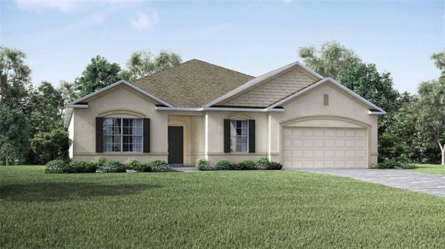 26261 Lancer Lane, Punta Gorda, FL 33983 (MLS #O5735279) :: Team Pepka