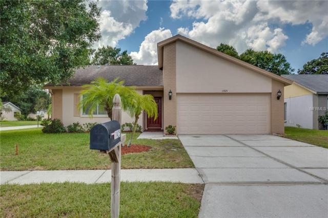 11425 Smokethorn Drive, Riverview, FL 33579 (MLS #O5735320) :: KELLER WILLIAMS CLASSIC VI