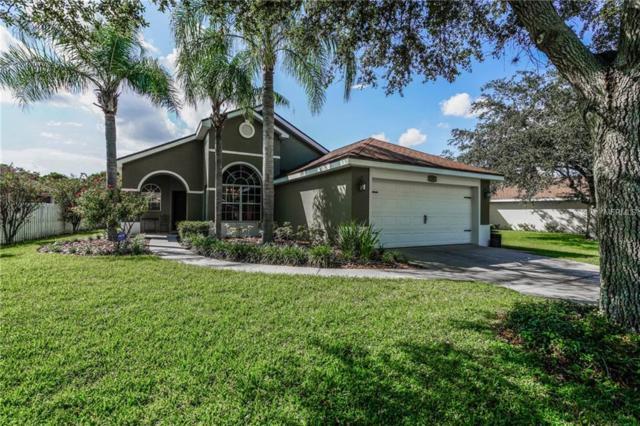 2301 Holly Ridge Drive, Ocoee, FL 34761 (MLS #O5735331) :: Bustamante Real Estate