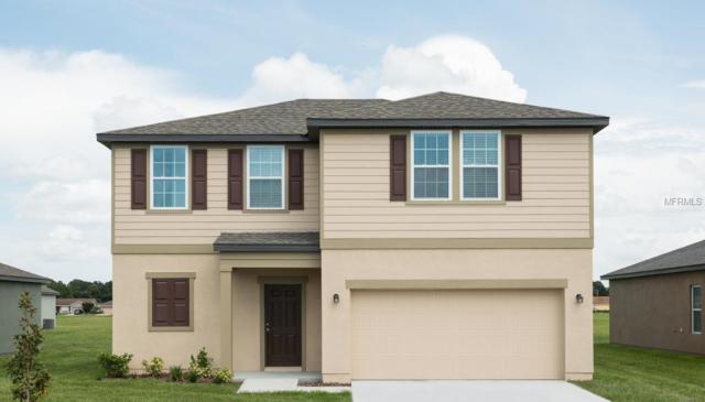 16409 Bloom Court, Groveland, FL 34736 (MLS #O5735512) :: Lock and Key Team