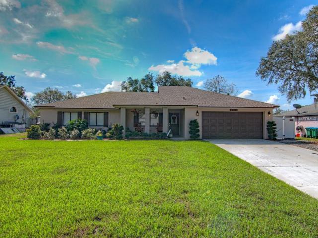 2531 Hendricks Terrace, Deltona, FL 32738 (MLS #O5735560) :: The Light Team
