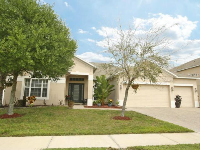 609 Spring Leap Circle, Winter Garden, FL 34787 (MLS #O5735629) :: Mark and Joni Coulter | Better Homes and Gardens
