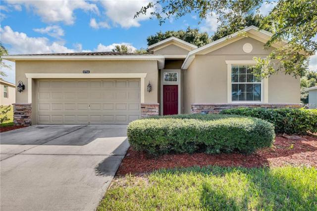 5714 Rutherford Road, Mount Dora, FL 32757 (MLS #O5735805) :: GO Realty