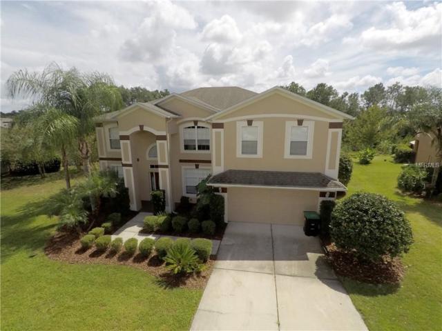 6354 Rolden Court, Mount Dora, FL 32757 (MLS #O5735829) :: GO Realty