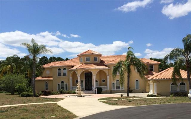 2532 Hempel Cove Court, Windermere, FL 34786 (MLS #O5735914) :: Mark and Joni Coulter   Better Homes and Gardens
