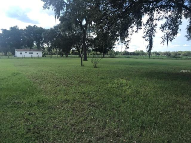 2700 Farmingdale Road, Clermont, FL 34714 (MLS #O5735974) :: Team Pepka