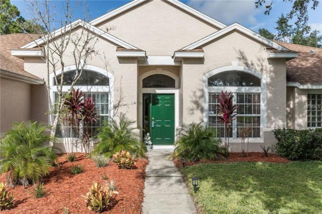 1904 Brandy Mill Lane, Orlando, FL 32825 (MLS #O5736042) :: Zarghami Group