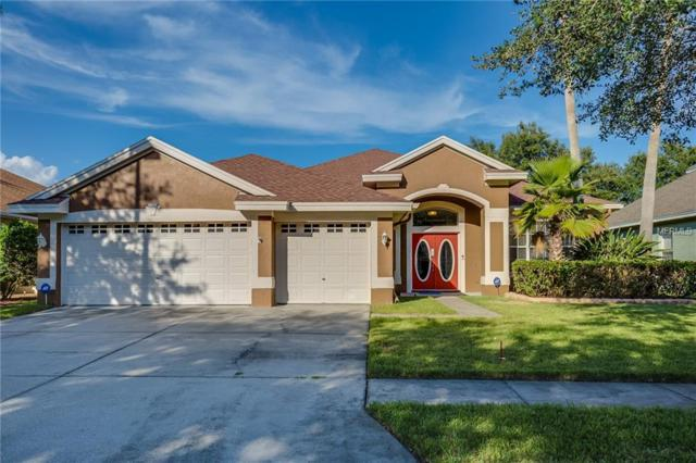10712 Tavistock Drive, Tampa, FL 33626 (MLS #O5736065) :: The Duncan Duo Team