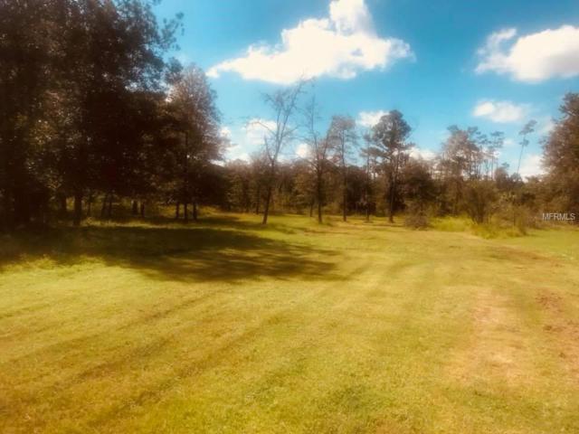 Sioux Trail, Kissimmee, FL 34747 (MLS #O5736071) :: The Duncan Duo Team
