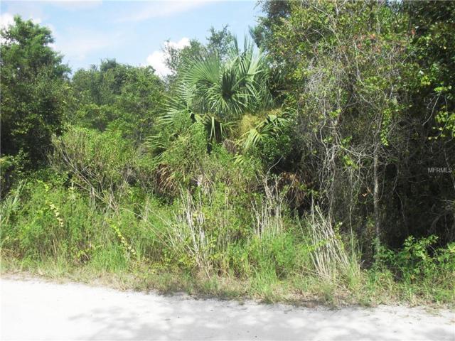 2005 Wiggley Farms Road, Deltona, FL 32725 (MLS #O5736151) :: Premium Properties Real Estate Services