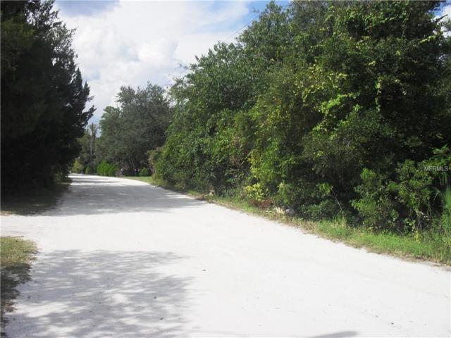 2025 Wiggley Farms Road, Deltona, FL 32725 (MLS #O5736158) :: Premium Properties Real Estate Services