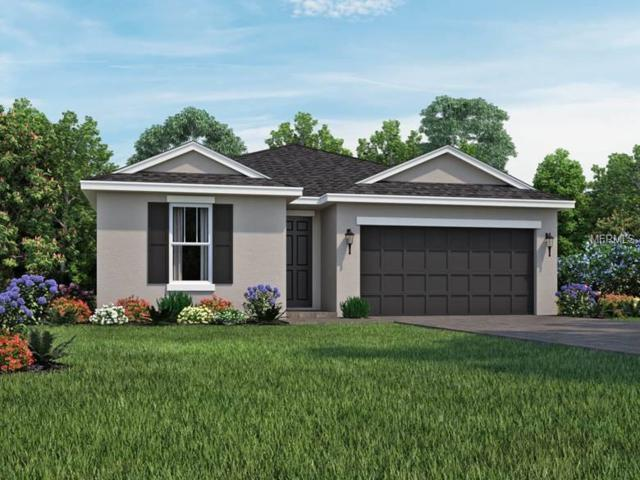 4851 Rolling Greene Drive, Wesley Chapel, FL 33543 (MLS #O5736209) :: Griffin Group