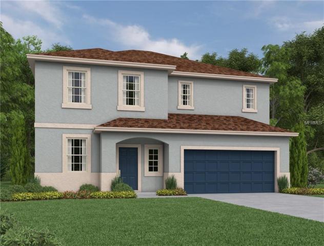 2861 Posada Lane, Odessa, FL 33556 (MLS #O5736237) :: Griffin Group