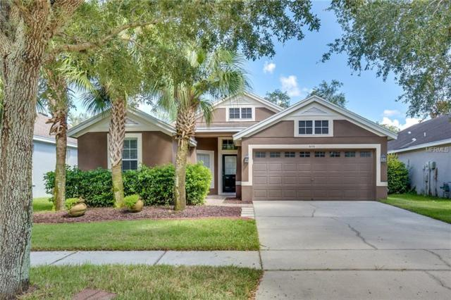 6106 Gannetside Place, Lithia, FL 33547 (MLS #O5736353) :: The Duncan Duo Team