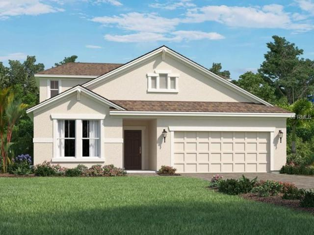 4514 Roycroft Terrace, Parrish, FL 34219 (MLS #O5736452) :: Griffin Group