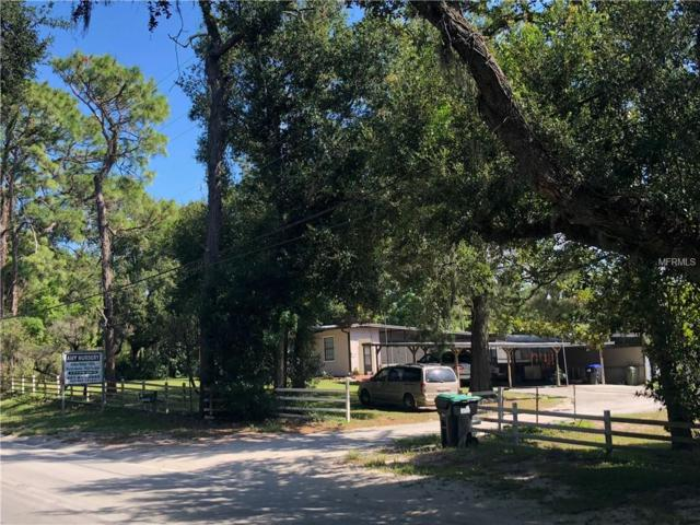 3915 Round Lake Road, Zellwood, FL 32798 (MLS #O5736546) :: The Duncan Duo Team