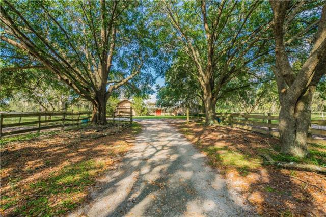 12129 Sweet Hill Road, Polk City, FL 33868 (MLS #O5738064) :: Team Touchstone