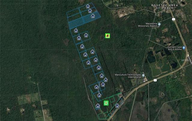 S Us Hwy 1, Oak Hill, FL 32759 (MLS #O5738260) :: Griffin Group