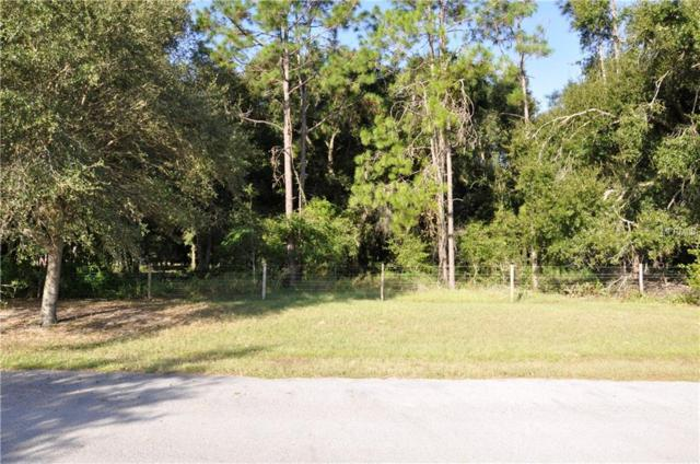 GRASS ROOTS Grass Roots Road Lot 3, Groveland, FL 34736 (MLS #O5738347) :: Griffin Group