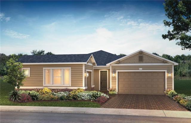 736 Alcove Drive, Groveland, FL 34736 (MLS #O5738418) :: RE/MAX Realtec Group