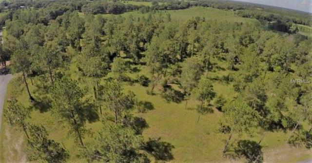 Bonsmara Drive, Groveland, FL 34736 (MLS #O5738542) :: RealTeam Realty