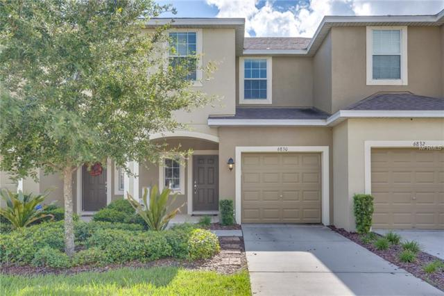 6830 Holly Heath Drive, Riverview, FL 33578 (MLS #O5738988) :: The Duncan Duo Team