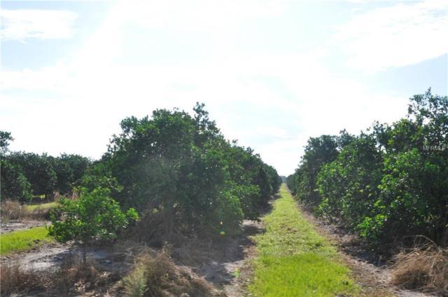 Cole Pumphouse Road, Lake Wales, FL 33898 (MLS #O5739485) :: Delgado Home Team at Keller Williams