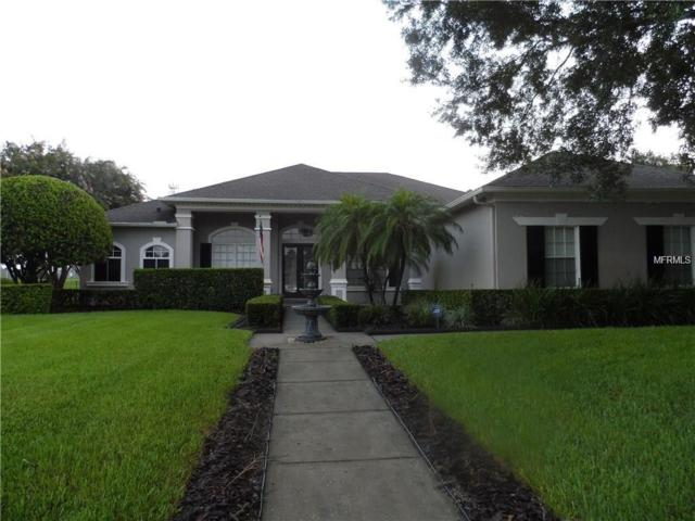 13533 Magnolia Park Court, Windermere, FL 34786 (MLS #O5740309) :: CENTURY 21 OneBlue