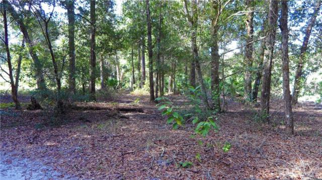Lot 10 Fenimore Street, Mount Plymouth, FL 32776 (MLS #O5740539) :: StoneBridge Real Estate Group