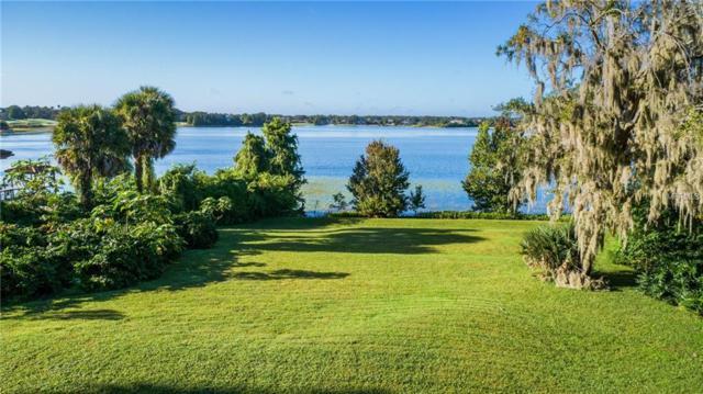 9736 Chestnut Ridge Drive, Windermere, FL 34786 (MLS #O5740568) :: Remax Alliance