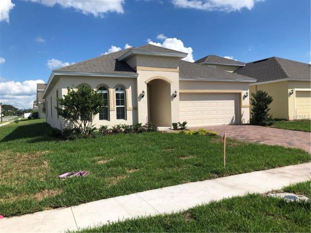 1721 Sunfish Street, Saint Cloud, FL 34771 (MLS #O5740670) :: RealTeam Realty