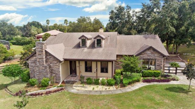 15532 Arabian Way, Montverde, FL 34756 (MLS #O5740675) :: RealTeam Realty