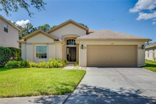 6801 Bluff Meadow Court, Wesley Chapel, FL 33545 (MLS #O5740743) :: The Duncan Duo Team