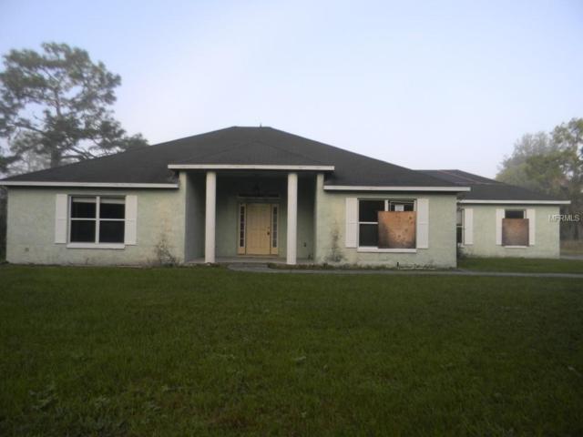 41249 Daffodil Court, Eustis, FL 32736 (MLS #O5740858) :: Team Touchstone