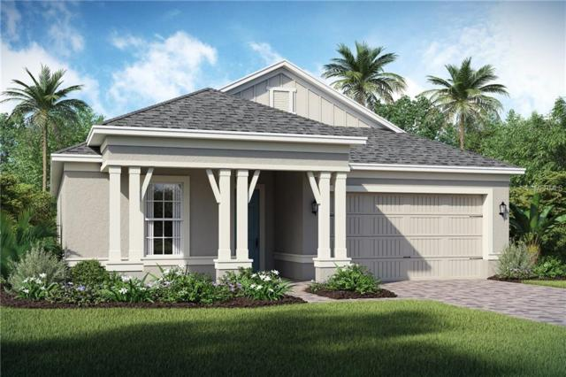 2240 Antilles Club Drive, Kissimmee, FL 34747 (MLS #O5741164) :: RE/MAX Realtec Group