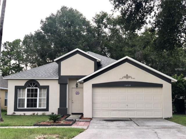 15739 Green Cove Boulevard, Clermont, FL 34714 (MLS #O5741216) :: Team Touchstone