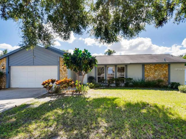 8928 Esguerra Lane, Orlando, FL 32836 (MLS #O5741231) :: StoneBridge Real Estate Group