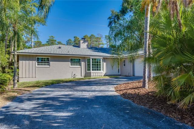 825 Pinewood Terrace W, Palm Harbor, FL 34683 (MLS #O5741272) :: Team Virgadamo