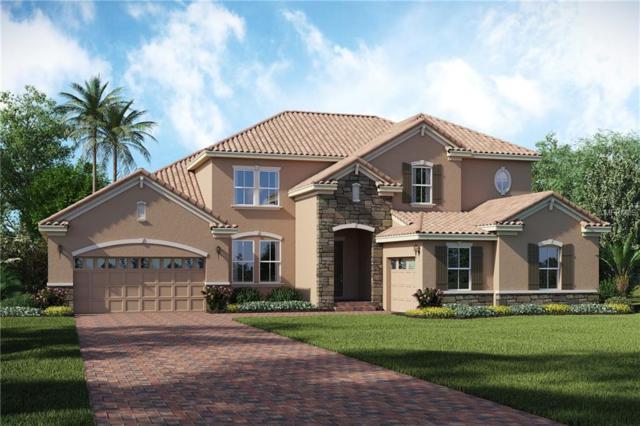 16006 Hampton Crossing Drive, Winter Garden, FL 34787 (MLS #O5741282) :: StoneBridge Real Estate Group
