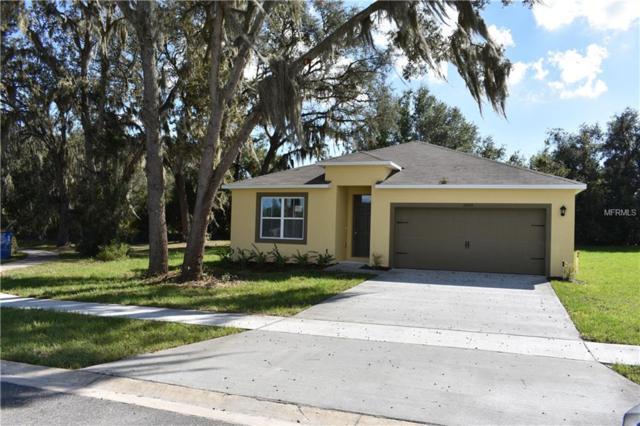 35005 Sweet Leaf Lane, Leesburg, FL 34788 (MLS #O5741300) :: Team Touchstone